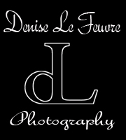 Denise Le Feuvre Photography